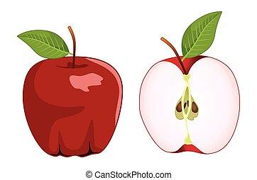 ensemble, pomme, vecteur, moitié, entier, rouges