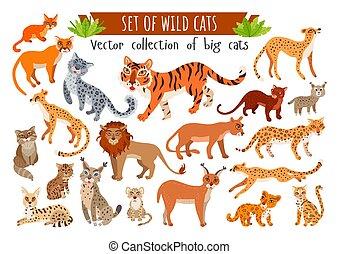 ensemble, sauvage, exotique, animals., dessin animé, cats., vecteur