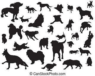 ensemble, silhouette, chiens