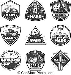 ensemble, vendange, étiquettes, recherche, mars, monochrome
