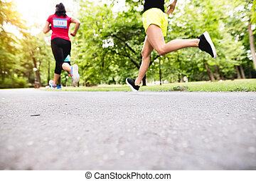 ensoleillé, jeune, courant, park., vert, jambes, athlètes