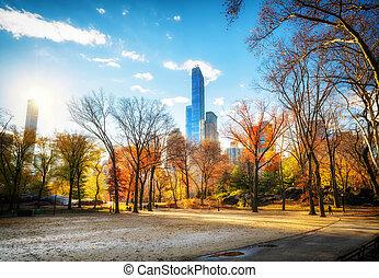 ensoleillé, parc, automne, central, jour