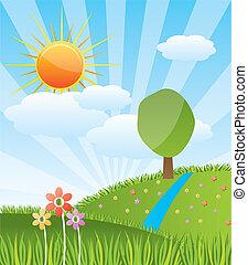 ensoleillé, paysage, forêt, printemps