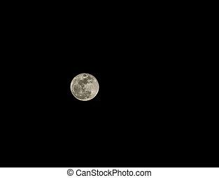 entiers, ciel clair, lune, sombre, nuit