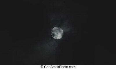 entiers, ciel nuit, nuageux, lune, contre