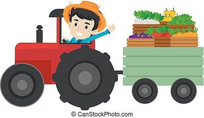 entiers, conduite, légumes, fruits, paysan, tracteur