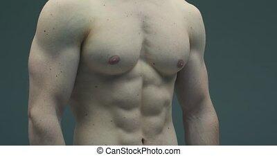 entraîné, haut, torse, 4k, muscles., type, fin, abs, poitrine, pompé, vidéo, athlète mâle
