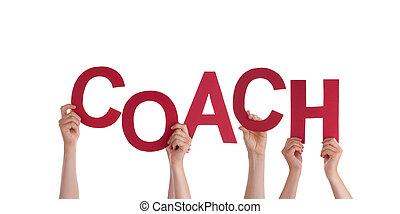 entraîneur, tenant mains