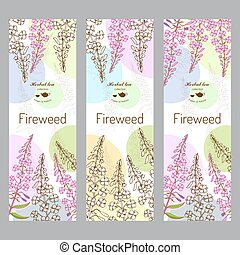 espèce, collection., fireweed
