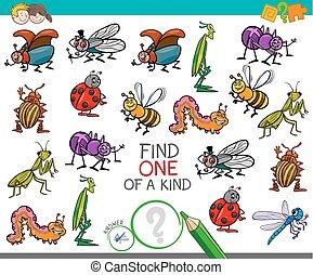 espèce, jeu, insecte, caractères, une