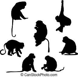 espiègle, silhouettes, singe