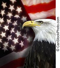 etats, patriotisme, uni, amérique, -