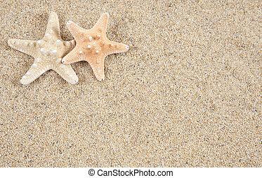 etoile mer, espace, -, sable, copie, plage