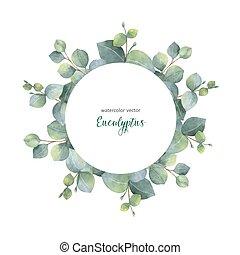 eucalyptus, branches., feuilles, couronne, dollar, aquarelle, vecteur, argent