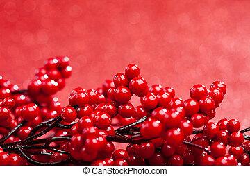 européen, fond, rouges, houx, dof), (shallow