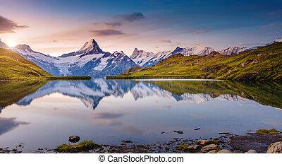 europe., alpin, emplacement, mt., schreckhorn., grindelwald, vue, vallée, alpes, bachalpsee, suisse