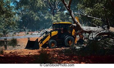 excavateur, buisson, forêt, tracteur