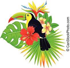 exotique, clair, paume, toucan, fleurs, composition