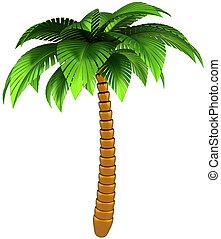 exotique, conception, palmier, élément
