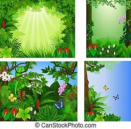 exotique, grand, vecteur, forêt, ensemble, cadre, beau, illustration, icône