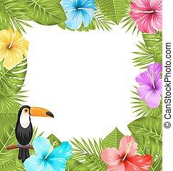 exotique, hibiscus, oiseau, coloré, fleur, cadre, toucan, jungle, fleurs