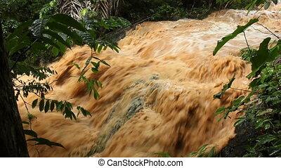 exotique, inondation, rivière