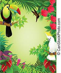 exotique, jungle, oiseau