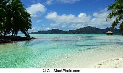 exotique, pavillons, plage, polynésie française