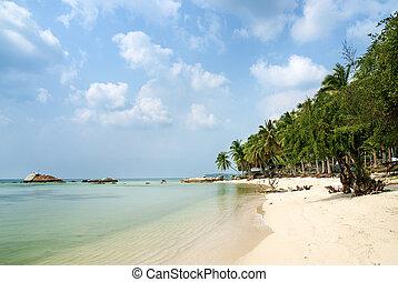 exotique, phuket, thaïlande, plage, exotique