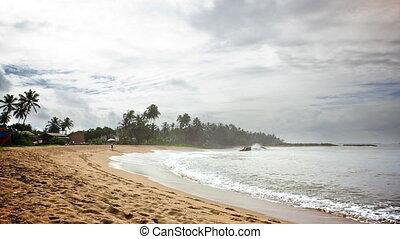 exotique, plage., lapse., temps