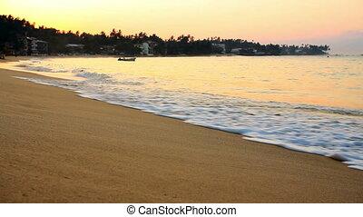 exotique, plage, sri lanka, unawatuna