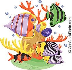 exotique, poisson tropical, illustration