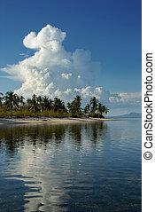 exotique, sur, cumulonimbus, plage