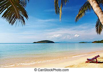 exotique, thaïlande, plage
