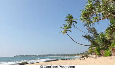 exotique, vierge, plage blanche, sable