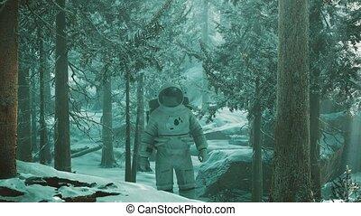 explorer, astronaute, forêt, neige