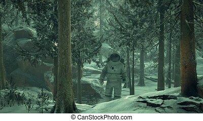 explorer, forêt, astronaute, neige