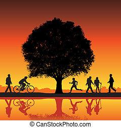 extérieur, arbre, activité
