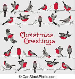 félicitation, hiver, -, oiseaux, invitation, vecteur, retro, noël carte