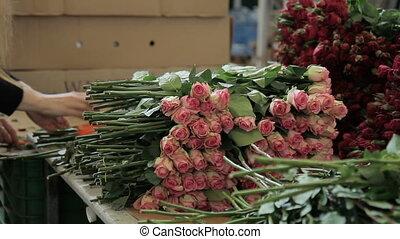 factory., fleur, travaux, femme, roses, jeune, frais