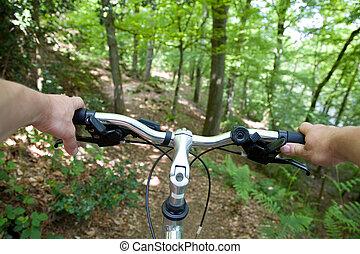faire vélo, montagne, forêt