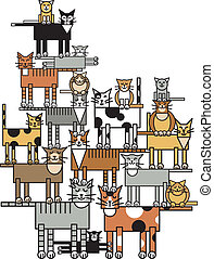 famille, chat