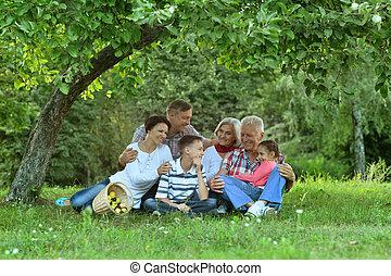 famille heureuse, portrait, enfants, parc
