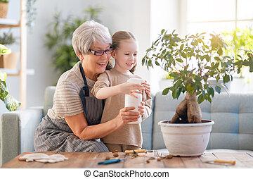 famille, plants., soucier