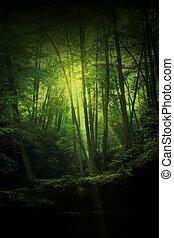 fantasme, forêt
