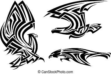 faucon, tribal, faucon, aigle