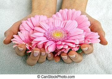 feminin, closeup, traitement, manucure, mains