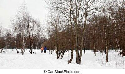 femme, course, hiver, neige, forêt, bouleau, homme