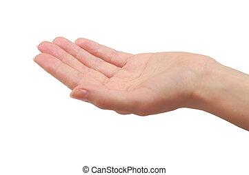 femme, donner, isolé, main, something., paume, tenue, closeup, ou