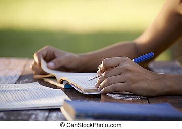femme, gens, étudier, université, jeune, education, essai